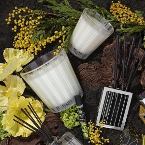 Free Gift Set with $125+Nest Fragrances Home Fragrances Sale
