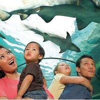 堪萨斯 探索中心+水族馆