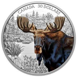 2020款 MOOSE纪念银币 $30