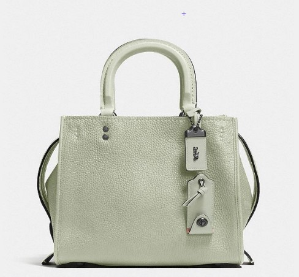 Last Day: Dealmoon Fashion Month ExclusiveUp to 30% Off Rogue Bags @Coach