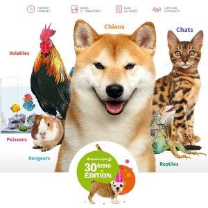 10月2-3日 上万只动物参加2021年第30届宠物展定档 狗狗、猫猫、仓鼠、变色龙等都有
