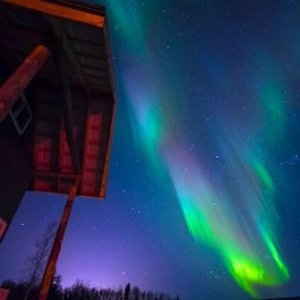 As low as $295Alaska 5-Day Tour Including Aurora Viewing