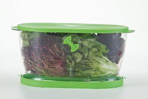 $7.41 (原价$25)Progressive 果蔬保鲜盒 4.7夸脱