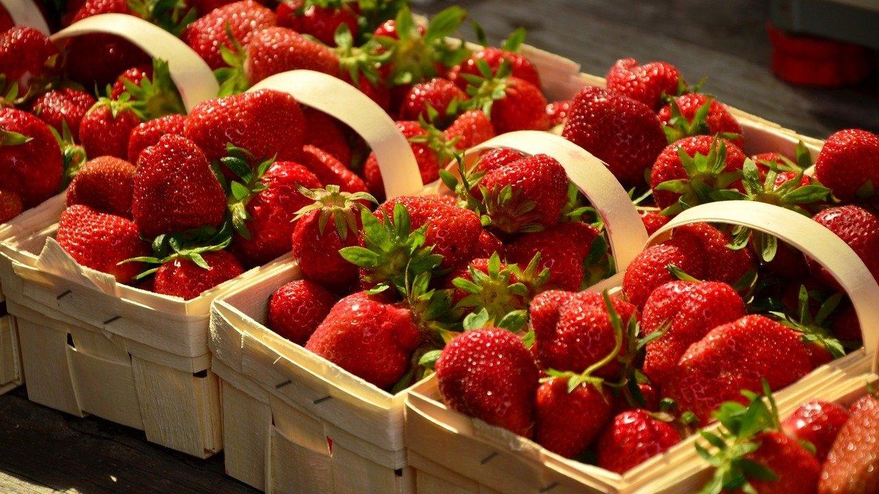 2021西雅图采摘攻略,大草莓,樱桃,苹果...西雅图采摘园合集,快收藏!待到瓜果飘香的季节,一起去采摘吧!