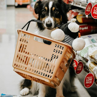 30% Off with First Repeat DeliveryPetco Selected Pet Food and Items on Sale