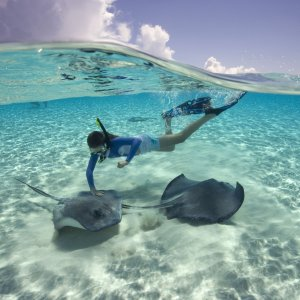 From $3947 NIGHTS Western Caribbean Cruise Deal