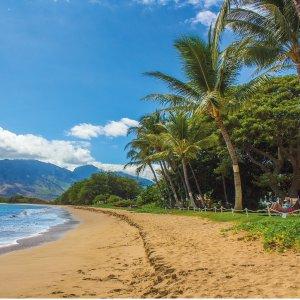 往返$340起拉斯维加斯--夏威夷茂宜岛 往返机票好价