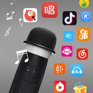 $61.99 + Free ShippingChangba Microphone Bluetooth Speakers+Microphones for Karaoke G1 Special Limited Edition