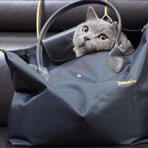 6折起!饺子包£95就入!Longchamp 国民饺子包折扣入 马卡龙色系抢手超好看