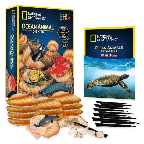 海洋生物挖掘玩具套装