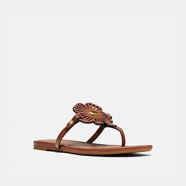 Julia 拖鞋