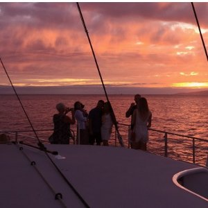 Oahu Dinner Cruise Tickets