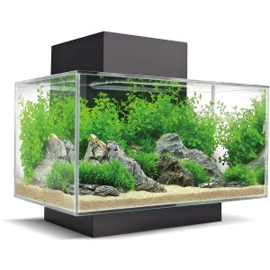 $119.99(原价$289.99)史低价:Fluval 富华 Edge 23升水族箱/鱼缸套装 享有6面观看体验