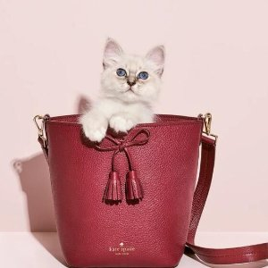 低至2.5折 封面款$90+最后一天:kate spade 官网美包惊喜特卖 收水桶包、mina花边包