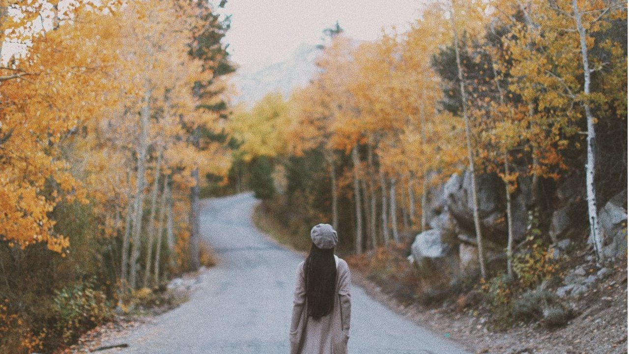 Autumn happens here, too -- 十月北加赏秋指南