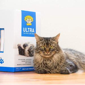 Buy 2 Save 10%Dr. Elsey's Cat Litter on Sale