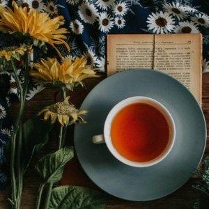 $9收十二星座茶Adagio Teas 超值茶品套装热卖 喝自己的星座专属茶
