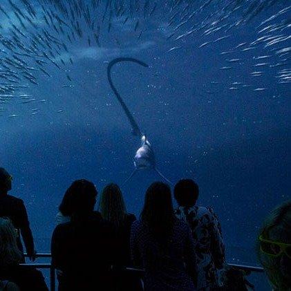 国家地理首创 纽约沉浸式海洋体验展馆