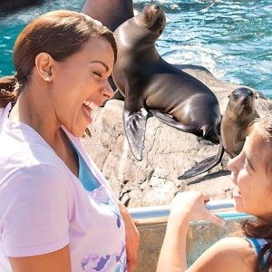 Up to 50% Off on TicketsOrlando Sea World Admission Limited Fall Savings