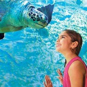 3天无限次数套票$69.99起圣安东尼奥 海洋世界+Aquatica 水上乐园套票特惠