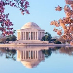 Sightsee Washington DC your way and save up to 47%