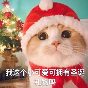部分现已开放预订 持续更新2020 美妆圣诞倒数日历 限量超值大盘点