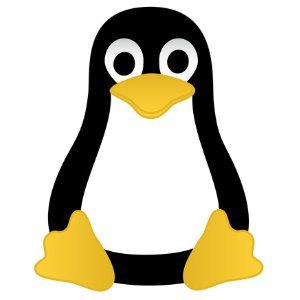 C Programming with Linux