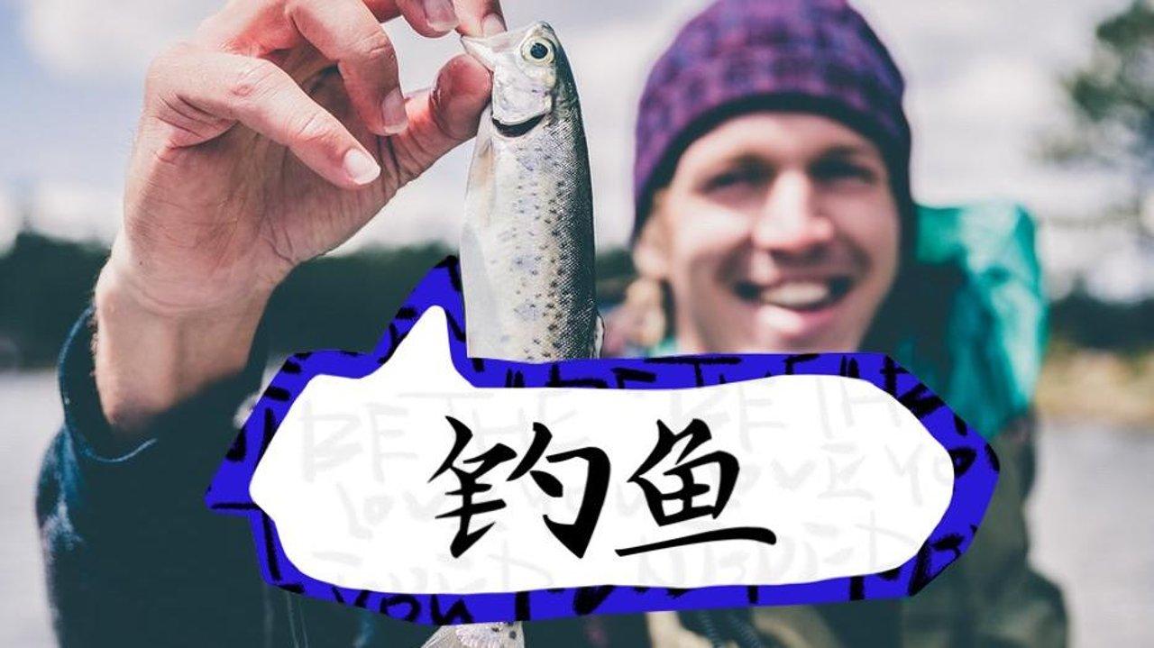 最全!多伦多周边的钓鱼圣地(含免费学钓鱼攻略)