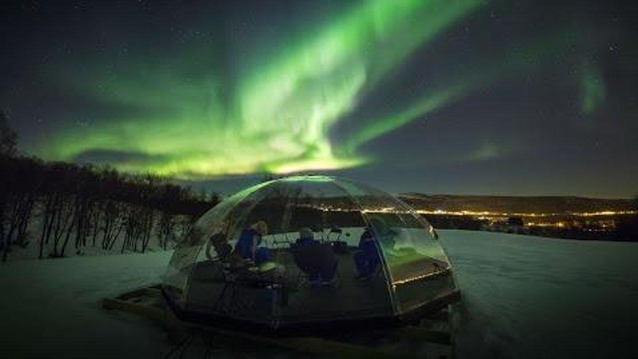 曼尼托巴省旅游攻略:跟我去看白鲸、北极熊和极光!