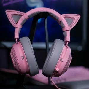 Starting from $53Razer Quartz Pink Mouse and Headset