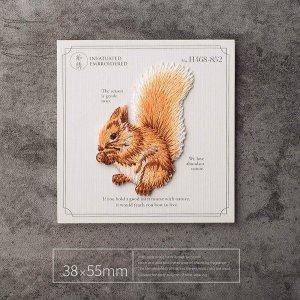 乐子推荐 小松鼠贴片仅€4.9SuperiorParts 小动物贴片 不损坏衣物 DIY属于你的独特T恤