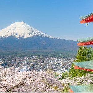 From $10999-Day Japan Guided Tour with Hotels and Air
