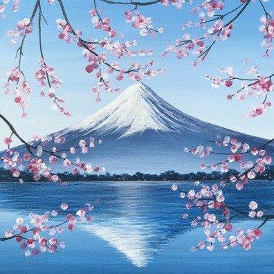 富士山倒影 适合13岁以上