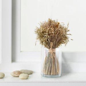 New ArrivalIKEA Dried Plants & Potpourri