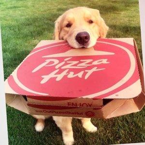 原价披萨限时5折Pizza Hut 正价菜单披萨开学季热卖