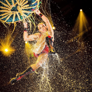 As low as  $99 + $50 Free Promo Code with PurchaseBlack Friday Sale Live: LE RÊVE The Dream Show
