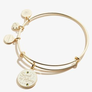 Alex and AniSweet as Honey Color Infusion Charm Bangle Shiny Gold