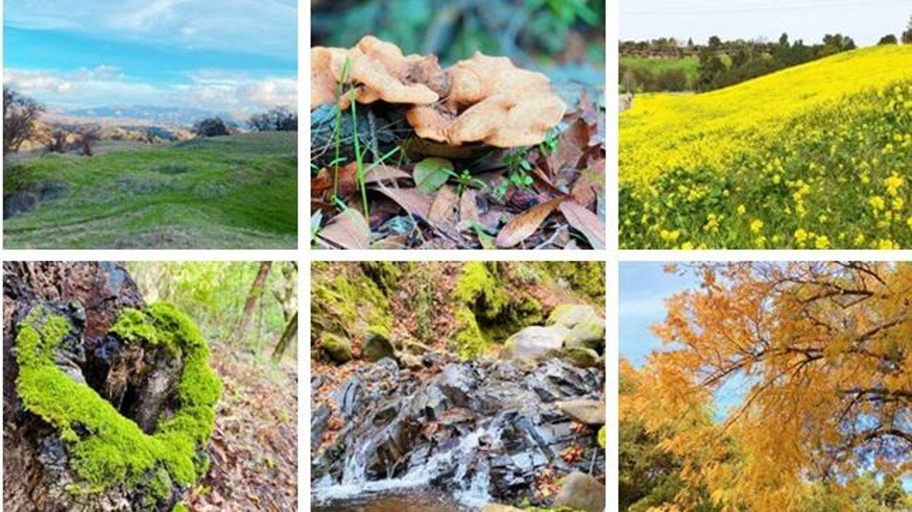 推荐10条湾区徒步远足步道,在自然的馈赠中找回初心