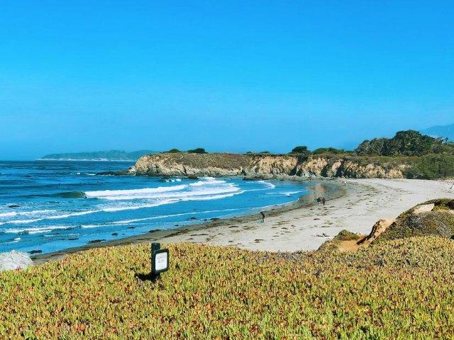 加州亲子游之Cambria海岸线上...