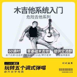 木吉他系统入门教学 弹唱乐理独奏