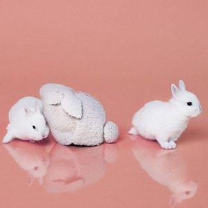 $579.6(原价$828)萌翻你的心Loewe 19年新款兔子包热卖