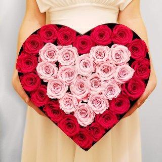 🌹 愿我们的爱如玫瑰之绚烂