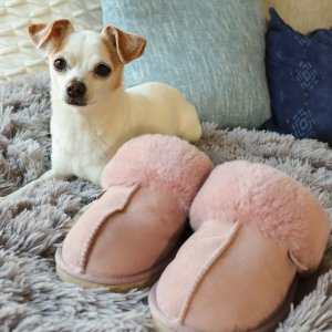 From $20Hautelook Faux Fur Slippers & More Sale