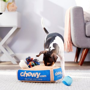 FRISCOHide and Seek Plush Chewy Box Puzzle Dog Toy - Chewy.com