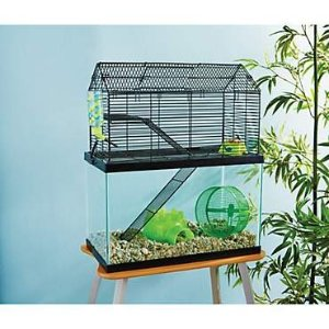 You & MeSmall Animal High Rise Tank Topper, 19.25