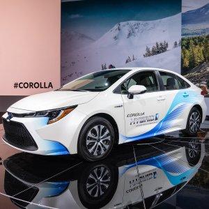卡罗拉外型+普锐斯油耗2020 Toyota Corolla Hybrid 混动版卡罗拉即将上市