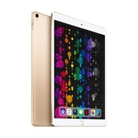iPad Pro (10.5-inch, Wi-Fi + Cellular, 256GB)  金色