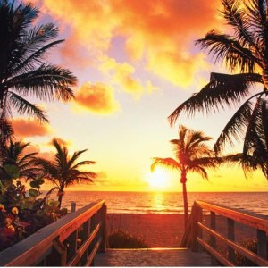 As Low as $57Fly Round-Trip to Florida from Cities Nationwide