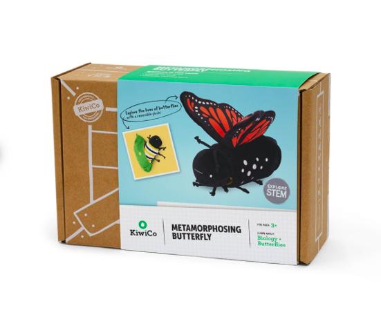 毛毛虫变身蝴蝶,适合年龄5+