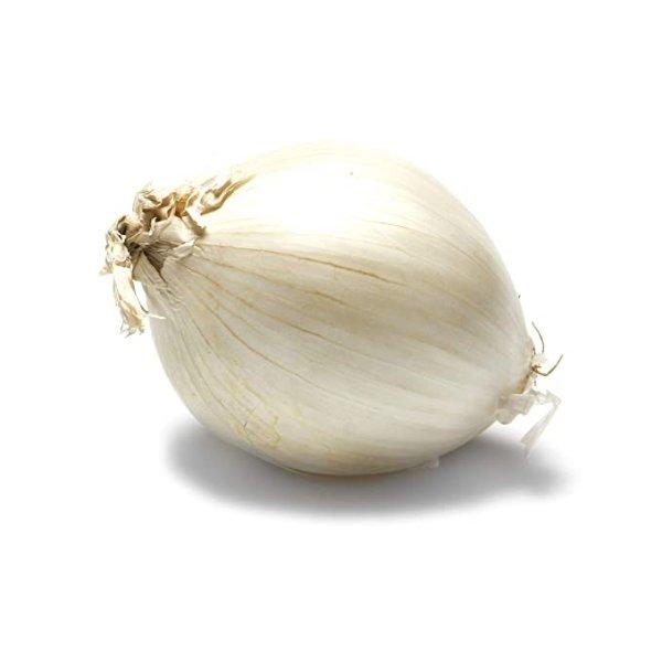 有机白洋葱